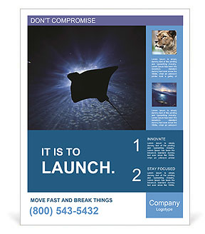 0000084227 Poster Template