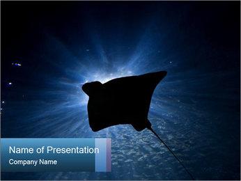 0000084227 PowerPoint Template - Slide 1