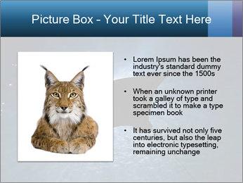 0000084227 PowerPoint Template - Slide 13