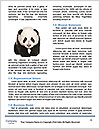 0000084227 Word Templates - Page 4