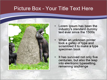 0000084229 PowerPoint Template - Slide 13