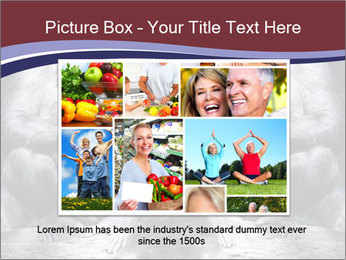 0000084229 PowerPoint Template - Slide 15
