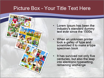 0000084229 PowerPoint Template - Slide 17