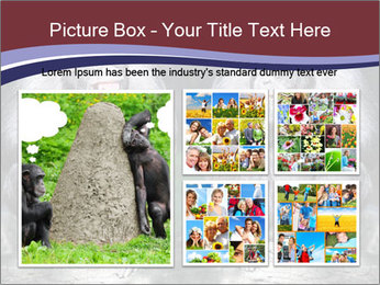 0000084229 PowerPoint Template - Slide 19
