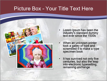 0000084229 PowerPoint Template - Slide 20