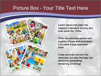 0000084229 PowerPoint Template - Slide 23