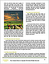 0000084230 Word Templates - Page 4