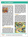 0000084231 Word Template - Page 3