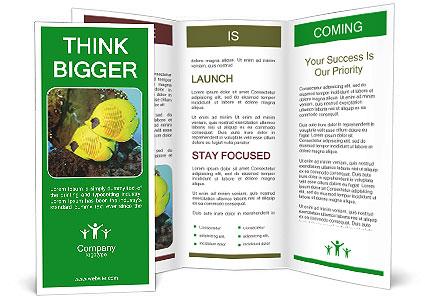 0000084233 Brochure Template