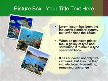 0000084233 PowerPoint Templates - Slide 17