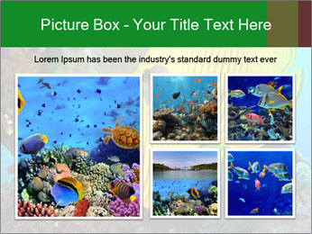 0000084233 PowerPoint Templates - Slide 19