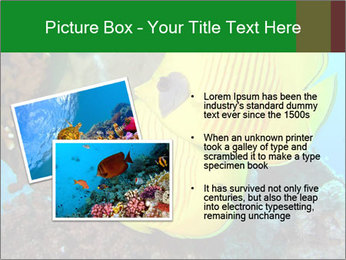 0000084233 PowerPoint Templates - Slide 20