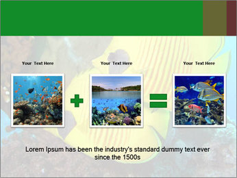 0000084233 PowerPoint Templates - Slide 22