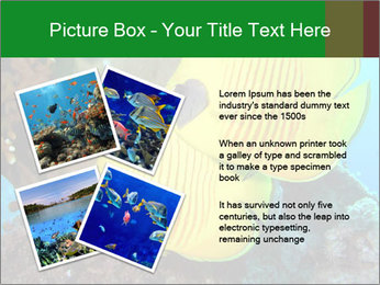 0000084233 PowerPoint Templates - Slide 23