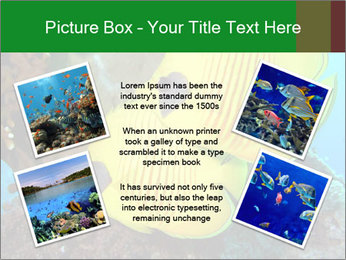 0000084233 PowerPoint Templates - Slide 24