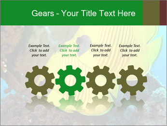 0000084233 PowerPoint Templates - Slide 48