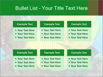 0000084233 PowerPoint Templates - Slide 56