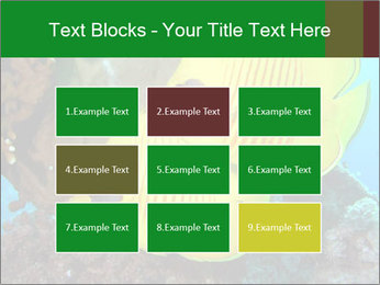0000084233 PowerPoint Templates - Slide 68