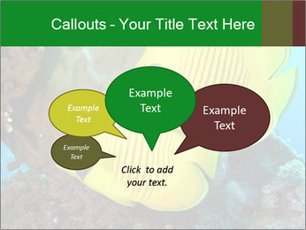 0000084233 PowerPoint Templates - Slide 73