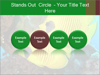 0000084233 PowerPoint Templates - Slide 76