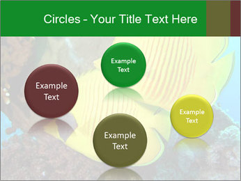 0000084233 PowerPoint Templates - Slide 77