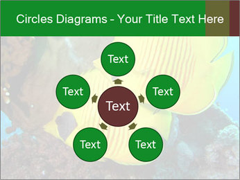 0000084233 PowerPoint Templates - Slide 78
