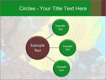 0000084233 PowerPoint Templates - Slide 79