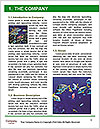 0000084233 Word Template - Page 3