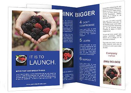 0000084234 Brochure Template