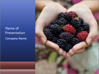 0000084234 PowerPoint Template - Slide 1