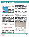 0000084236 Word Template - Page 3