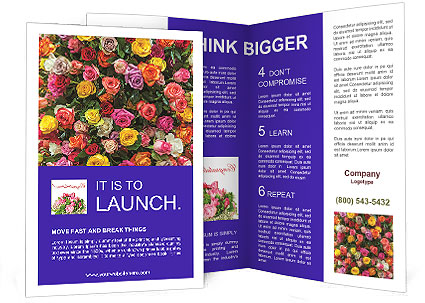 0000084244 Brochure Templates