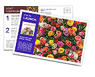 0000084244 Postcard Templates