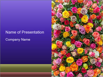 0000084244 PowerPoint Template - Slide 1