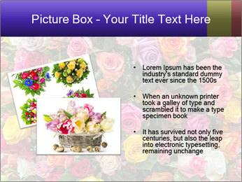 0000084244 PowerPoint Template - Slide 20