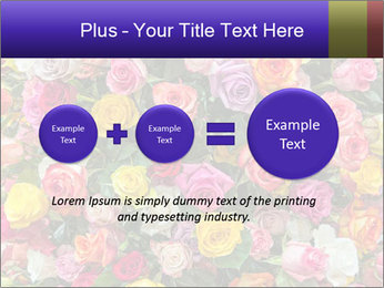 0000084244 PowerPoint Template - Slide 75
