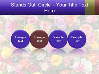 0000084244 PowerPoint Template - Slide 76