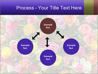 0000084244 PowerPoint Template - Slide 91