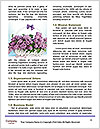 0000084244 Word Template - Page 4