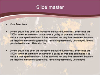 0000084248 PowerPoint Templates - Slide 2