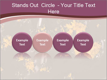 0000084248 PowerPoint Templates - Slide 76