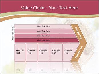 0000084251 PowerPoint Template - Slide 27
