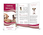 0000084253 Brochure Template