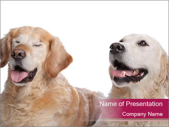 0000084253 PowerPoint Template - Slide 1