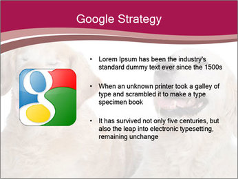 0000084253 PowerPoint Template - Slide 10