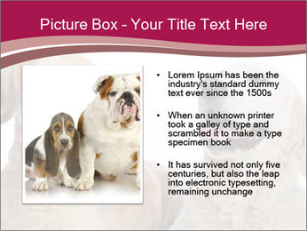 0000084253 PowerPoint Templates - Slide 13