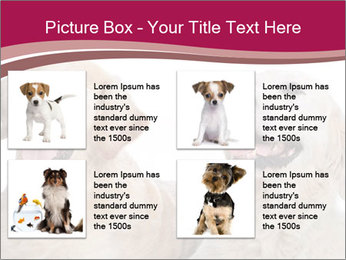 0000084253 PowerPoint Templates - Slide 14