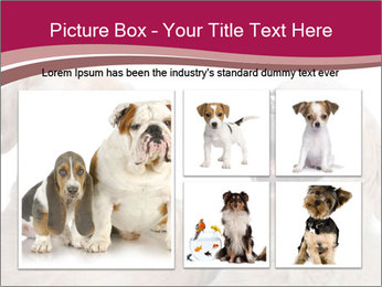 0000084253 PowerPoint Templates - Slide 19