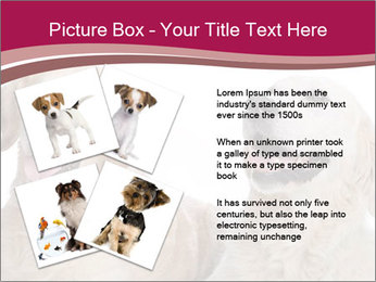 0000084253 PowerPoint Templates - Slide 23
