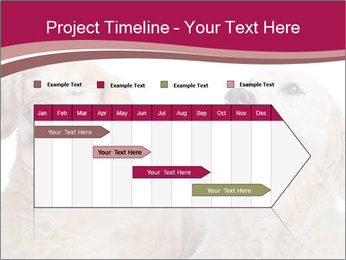 0000084253 PowerPoint Template - Slide 25